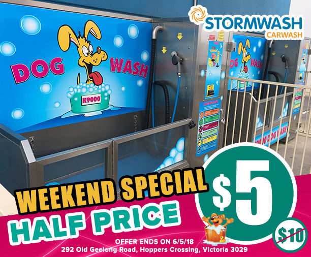 Half price dog wash