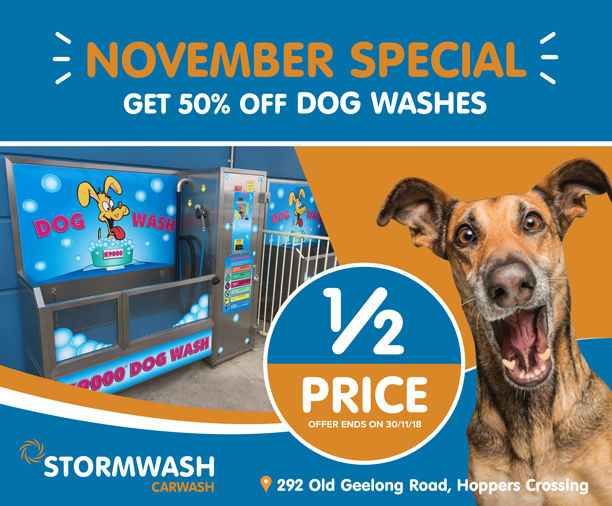 November dog wash half price